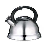 Gael Force Stainless Steel Whistling Kettle